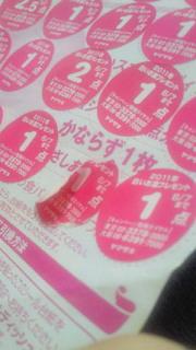 NEC_0933.jpg
